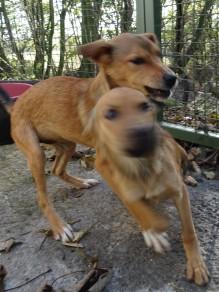 Lulu and Titch ❤️